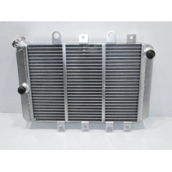 radiator yamaha grizzly 700